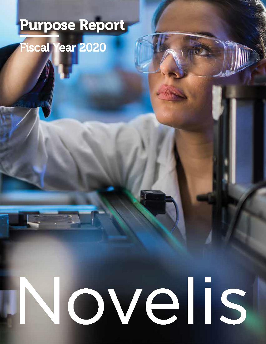Novelis purpose report